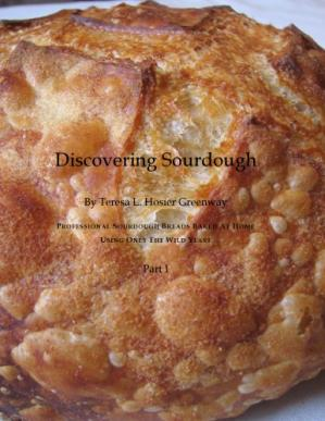 Book cover Discovering Sourdough: Professional Sourdough Breads Baked at Home Using Only the Wild Yeast, 3 parts