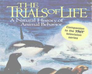 Book cover The trials of life : a natural history of animal behavior