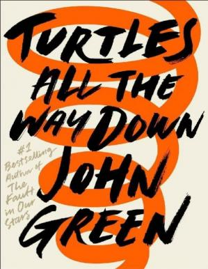 Book cover Turtles All the Way Down