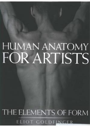 Copertina Human Anatomy for Artists  The Elements of Form