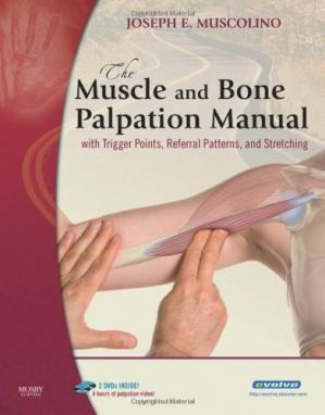 Book cover The Muscle and Bone Palpation Manual with Trigger Points, Referral Patterns and Stretching