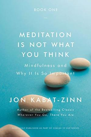 पुस्तक कवर Meditation Is Not What You Think: Mindfulness and Why It Is So Important