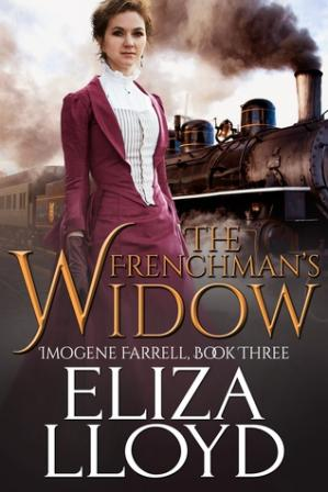 Book cover The Frenchman's Widow