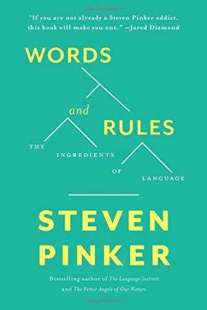 Buchdeckel Words and Rules: The Ingredients Of Language