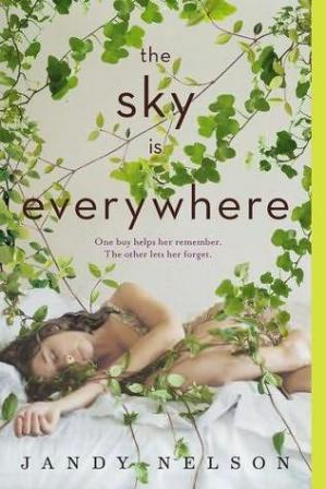 Book cover The Sky Is Everywhere