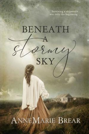表紙 Beneath a Stormy Sky