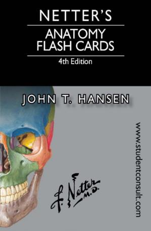 Book cover Netter's anatomy flash cards