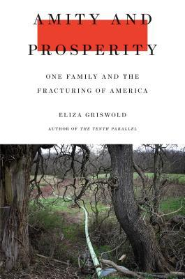 Εξώφυλλο βιβλίου Amity and Prosperity: One Family and the Fracturing of America