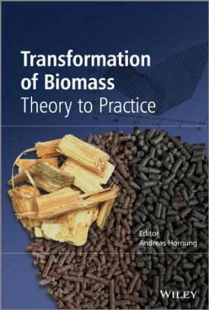 Couverture du livre Transformation of Biomass: Theory to Practice