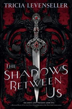 Book cover The Shadows Between Us
