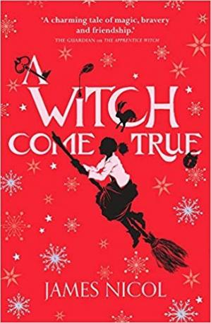 Buchdeckel A Witch Come True