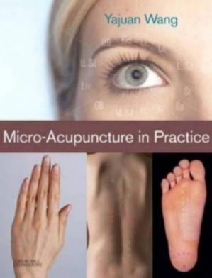 Sampul buku Micro-acupuncture in practice