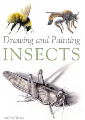 Book cover Drawing and Painting Insects
