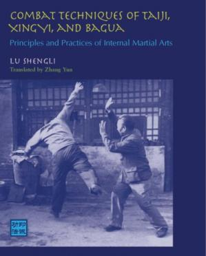 Buchdeckel Combat Techniques of Taiji, Xingyi, and Bagua: Principles and Practices of Internal Martial Arts