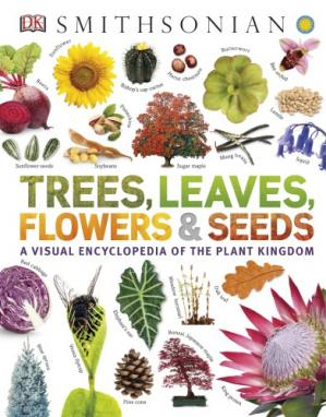 Εξώφυλλο βιβλίου Trees, Leaves, Flowers and Seeds: A Visual Encyclopedia of the Plant Kingdom