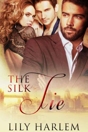 Book cover The Silk Tie