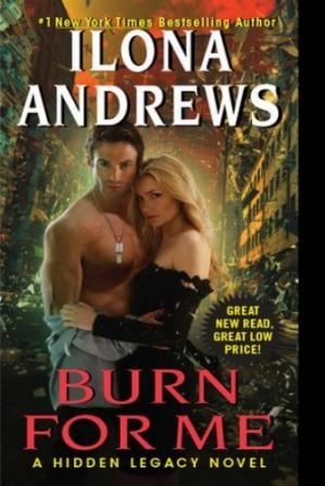 Book cover Burn for Me