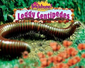 کتاب کی کور جلد Leggy Centipedes (No Backbone! the World of Invertebrates)