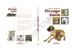 Book cover Layout 2