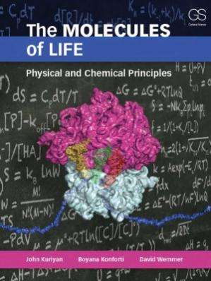 Book cover The Molecules of Life  Physical and Chemical Principles