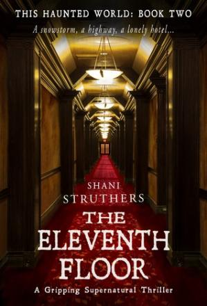 Book cover The Eleventh Floor