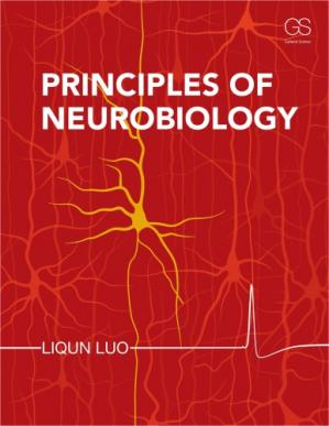Book cover Principles of Neurobiology