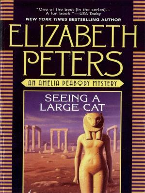 Book cover Seeing a Large Cat
