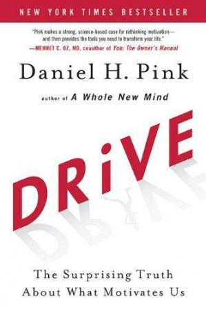 Sampul buku Drive: The Surprising Truth about What Motivates Us