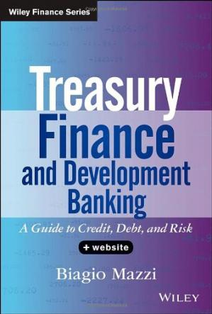Couverture du livre Treasury Finance and Development Banking: A Guide to Credit, Debt, and Risk