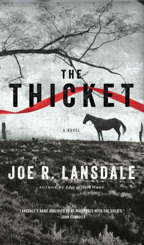 Couverture du livre The Thicket