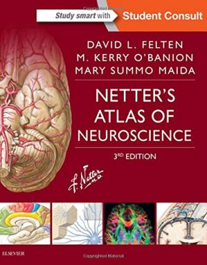 Book cover Netter's Atlas of Neuroscience, 3e