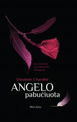 Book cover Angelo pabučiuota